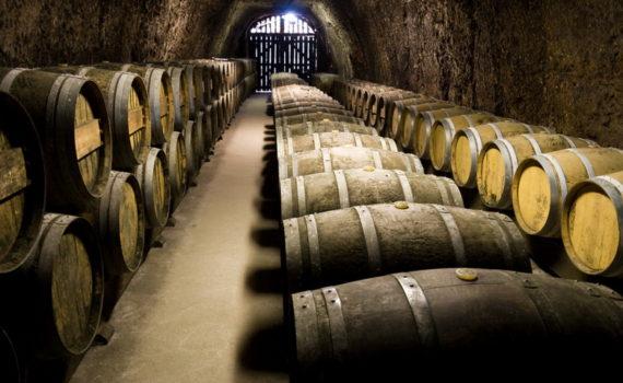 vini-piemonte-italia